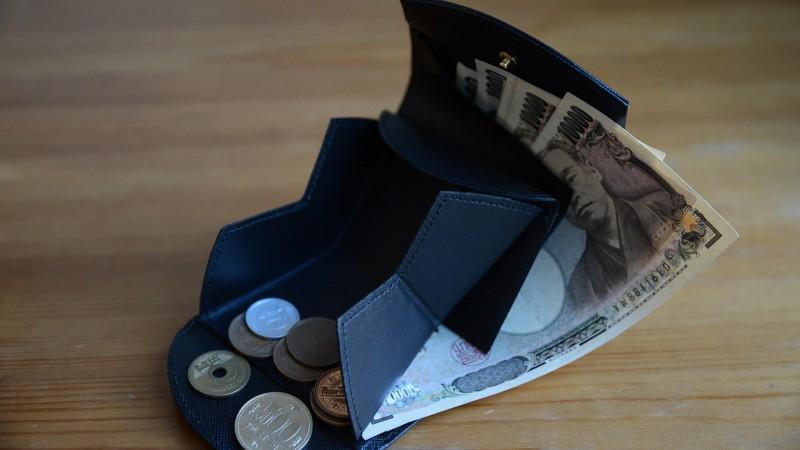 hammock wallet compact cartolare