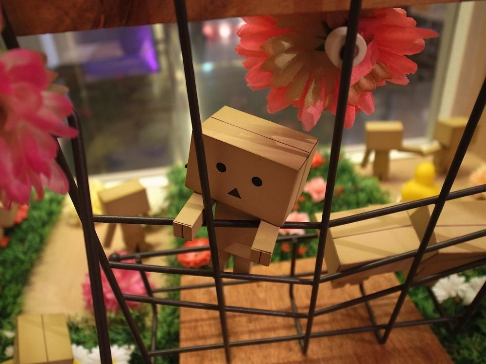 Yotsubato danboard exhibition yotsubato cafe 06