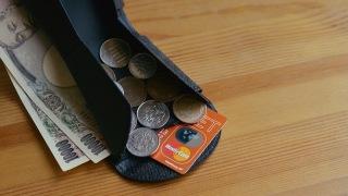 独自構造がいかしてる財布「カルトラーレ ハンモックウォレット」がコンパクトだけどたっぷり収納できていい感じ