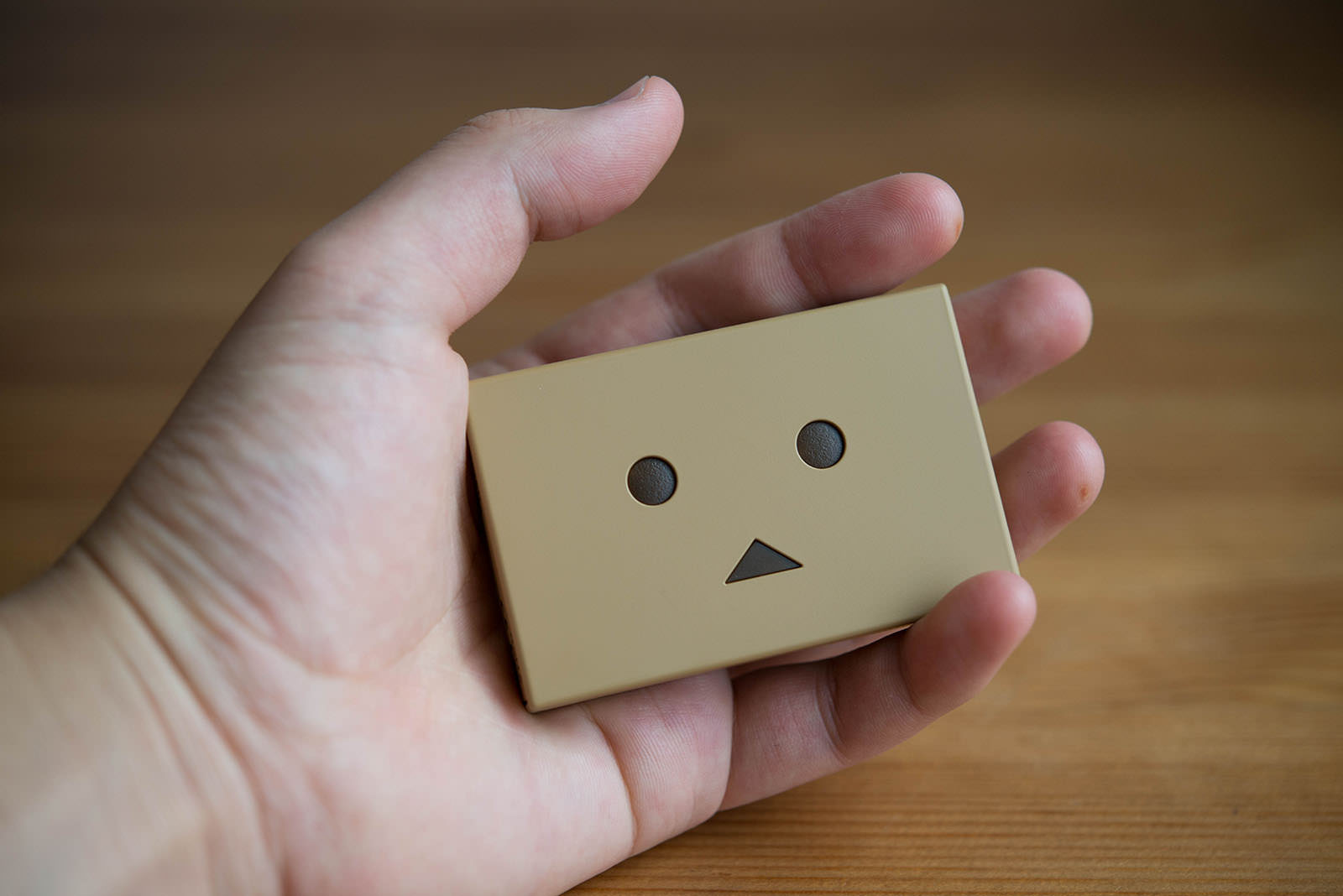 cheero Power Plus DANBOARD version block review_14
