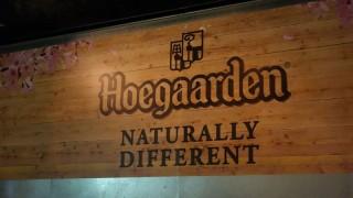 ビール美味い最高!原宿に期間限定オープンした「ヒューガルデン花見カフェ」に行ってきた