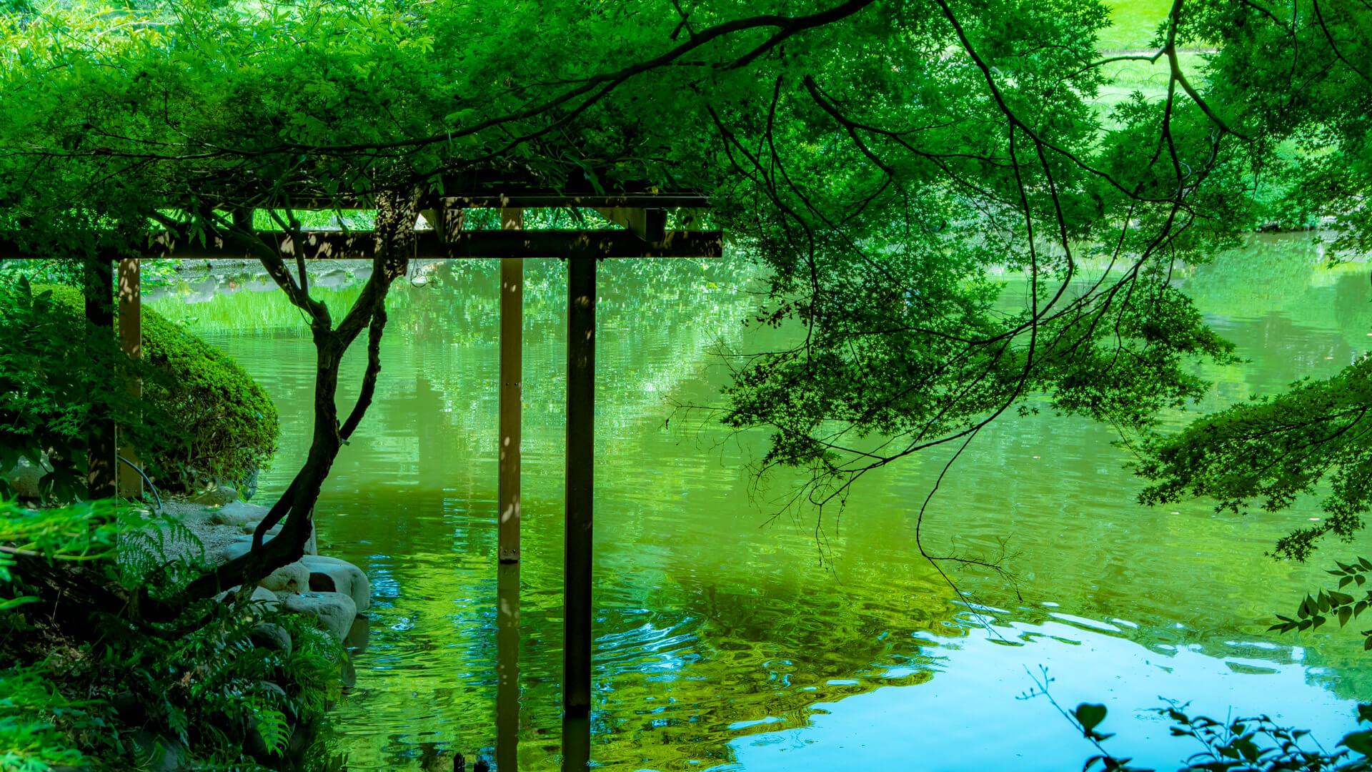 新宿御苑 言の葉の庭