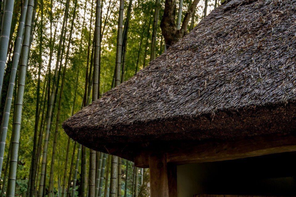 とらや工房 茅葺き屋根